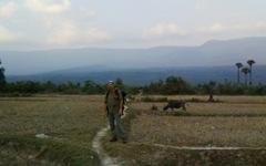 Бокорское плато