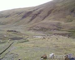 В Боливию