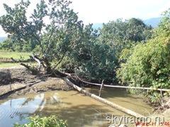 мост между рисовыми полями