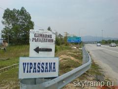 Ответвление дороги на пальмовую плантацию