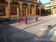 yang monks